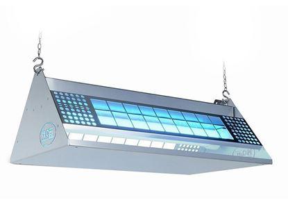 Lampa Owadobójcza 800 m2 Lepowa Mo Stick 372