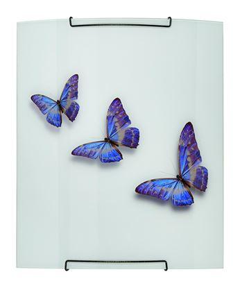 Kinkiet Farfalla
