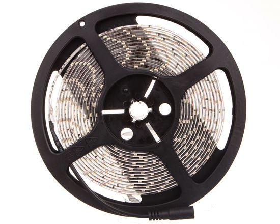 Pasek LED 12V 50W LEDS-P 10W/M IP54 CW 5m zimnobiały 24123