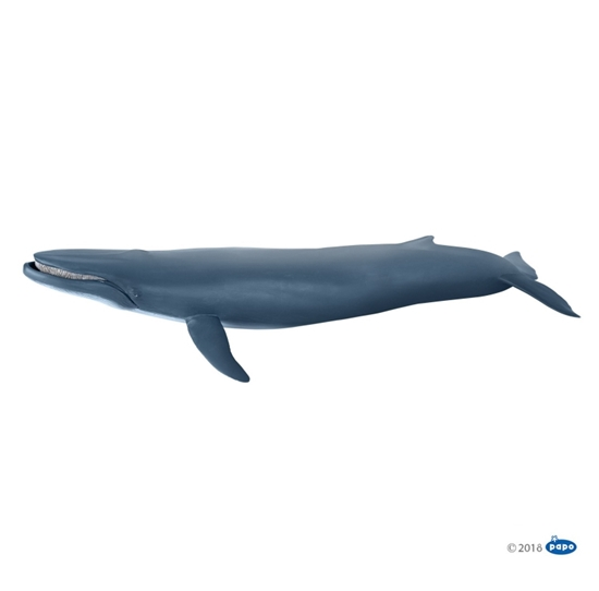 Papo 56037 Płetwal błękitny  38,5x17x7,5cm