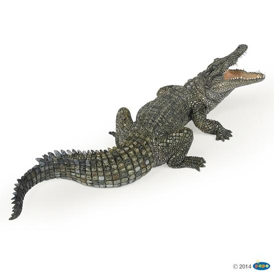 Papo 50055 Krokodyl nilowy (50055 RUSSELL)