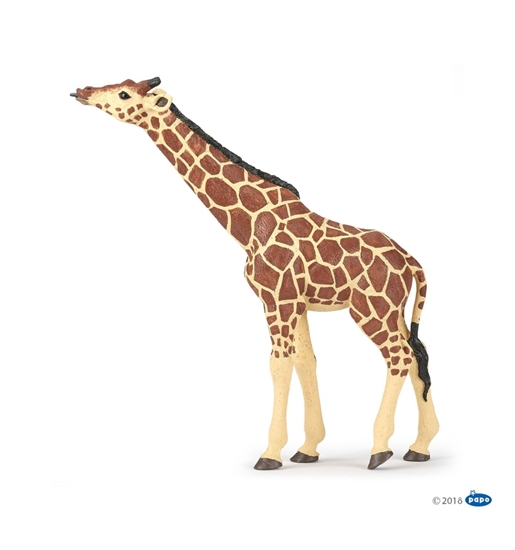 Papo 50236 Żyrafa z wyciągniętą głową  15x3,7x16cm