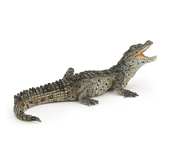 Papo 50137 Krokodyl młody  11x5x4cm (50137 RUSSELL)