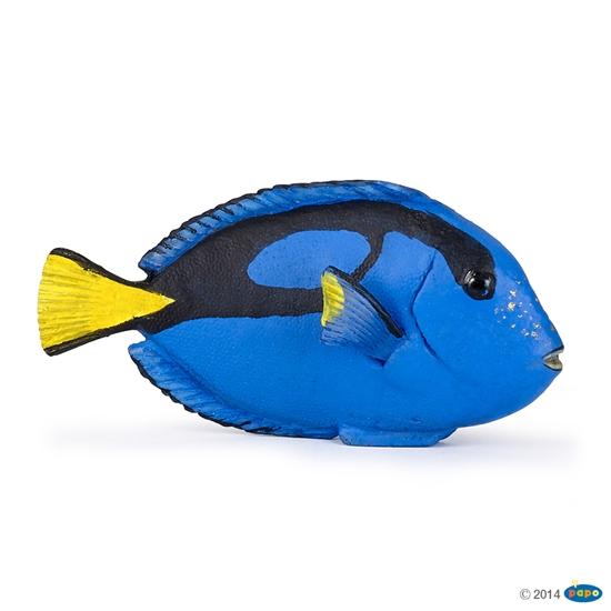 Papo 56024 Zebrasoma niebiesko-żółta (56024 RUSSELL)