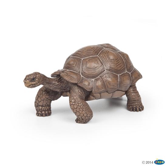 Papo 50161 Żółw z Galapagos