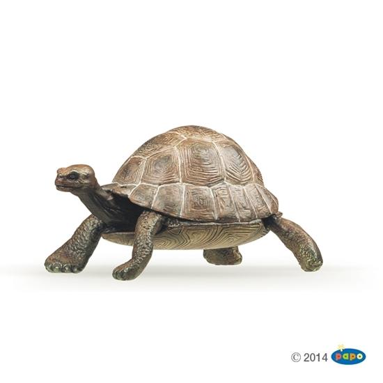 Papo 50013 Żółw  8x6x4cm (50013 RUSSELL)