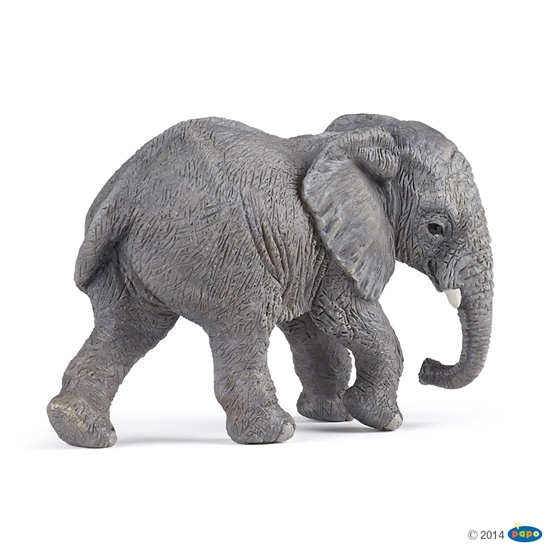 Papo 50169 Słoń afrykański młody (50169 RUSSELL)