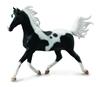 CollectA 88539 koń półkrwi arabskiej pinto, skala 1:12 (004-88539)