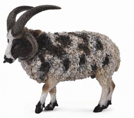 CollectA 88728 Owca wieloroga  rozmiar:L (004-88728)