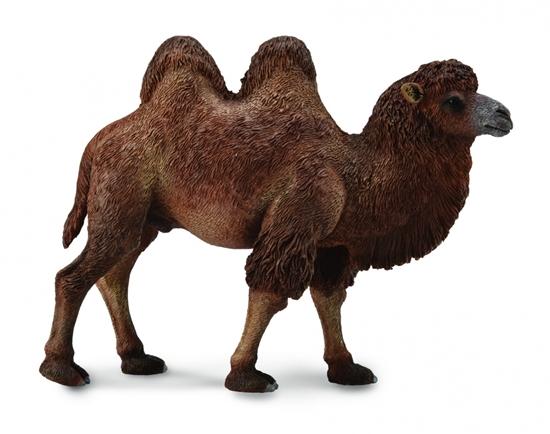 CollectA 88807 Wielbłąd dwugarbny  rozmiar:L  12,4cm (004-88807)