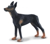 CollectA 88086 Doberman - pies rozmiar:L (004-88086)