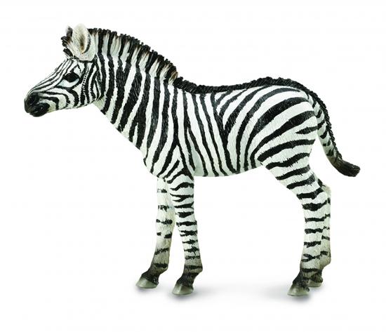 CollectA 88850 źrebię Zebry  rozmiar: M (004-88850)