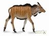 Collecta 88768 Antylopa eland cielę,  rozmiar: M (004-88768)