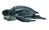 COLLECTA 88680 Żółw skórzasty  rozm:M  8,5x3cm (004-88680)
