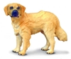 COLLECTA 88116 PIES RASY GOLDEN RETRIEVER  rozmiar:M (004-88116)