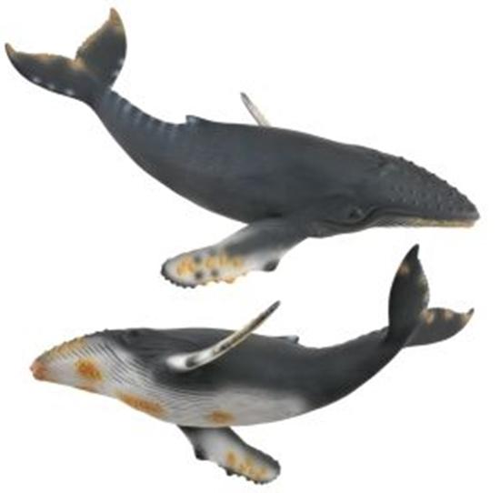 CollectA 88347 Wieloryb humbak   rozmiar:XL (004-88347)