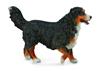 CollectA 88801 Berneński pies pasterski  rozmiar:L 10,5c (004-88801)