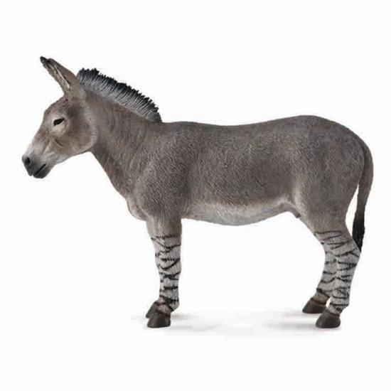 CollectA 88664 Osioł dziki afrykański  rozmiar:L (004-88664)