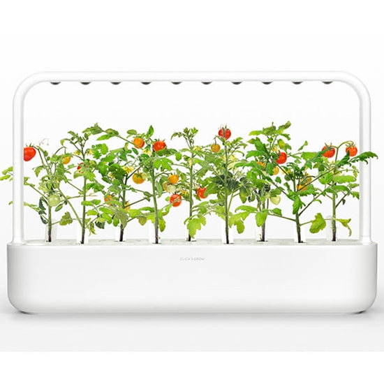 Inteligentny ogród Smart Garden 9