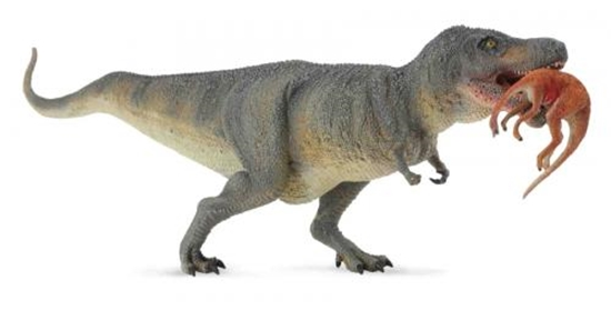 CollectA 88573 Dinozaur Tyrannosaurus rex   roz:XL 24x8cm (004-88573)