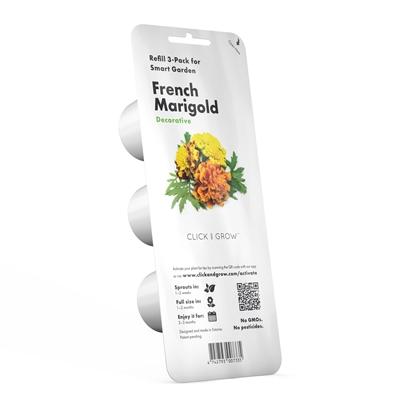 Nagietek francuski - kapsułki roślinne Smart Garden