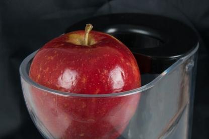Wyciskarka wolnoobrotowa z dużym wlotem na całe owoce ELDOM PJ450