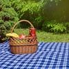 Koc piknikowy PROMIS KP200 KN