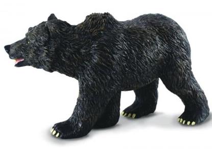 CcllectA 88030 Niedźwiadek grizzly  rozmiar:L (004-88030)