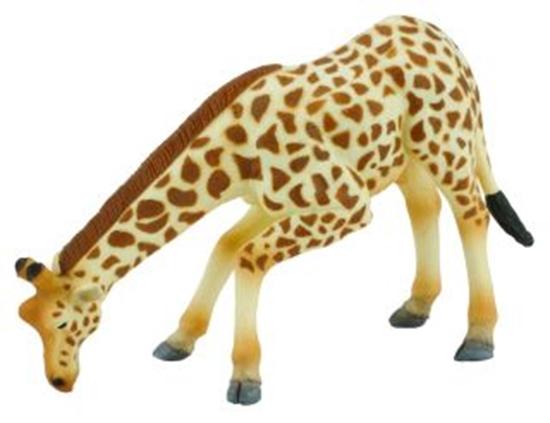 CollectA 88404 88404 Żyrafa zachodnioafrykańska  - pijąca rozmiar:XL (004-88404)