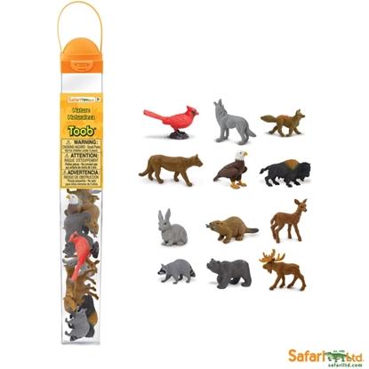 Safari 685804 zwierzęta natury 12 sztuk w tubie