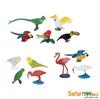 Safari Ltd 680404 egzotyczne ptaki 12szt. w tubie