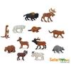 Safari Ltd 697004 zwierzęta Ameryki Północnej 10 sztuk w tubie