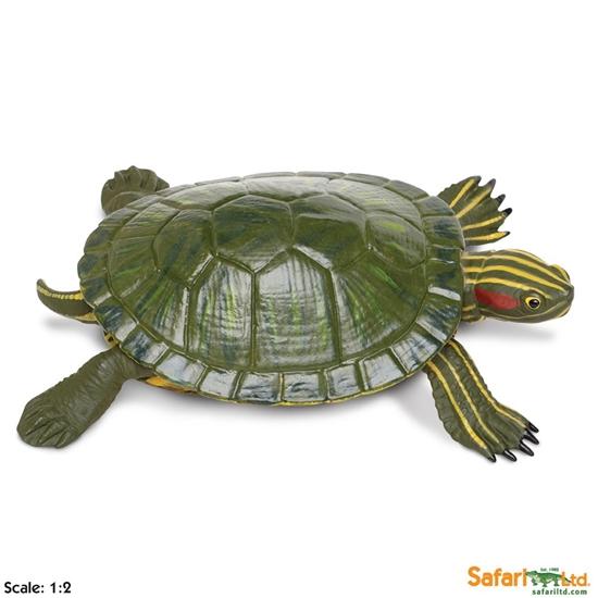 XL Safari Ltd 269529 Żółw czerwonolicy  13x3,8cm