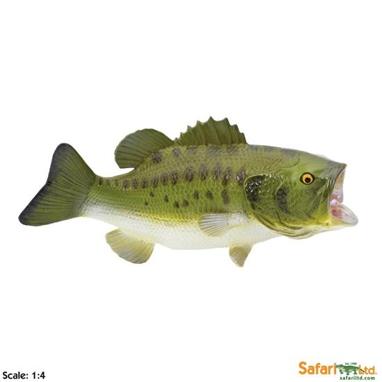 XL Safari Ltd 265629 Bass wielkogębowy   15 x 7,25cm  skala 1:4