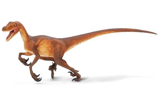 Safari Ltd 299929 Dinozaur Velociraptor 21x8,5cm