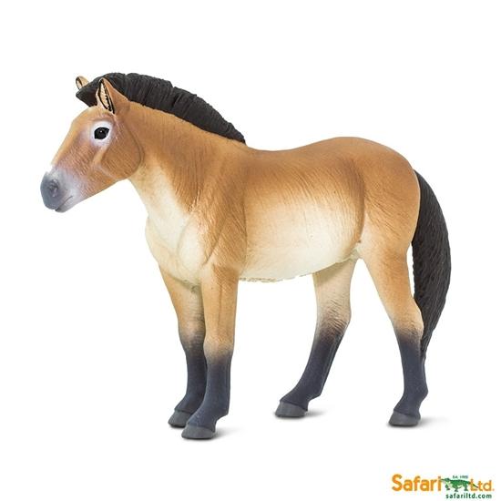 Safari Ltd 153505 Koń Przewalskiego  12,4x3x9cm