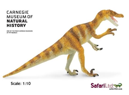 Safari Ltd 410601 Velociraptor  1:10  18x9cm  Carnegie