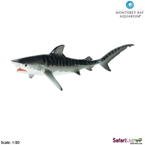 Safari Ltd 211702 Żarłacz tygrysi 1:20  20,5x7,5cm  Monterey