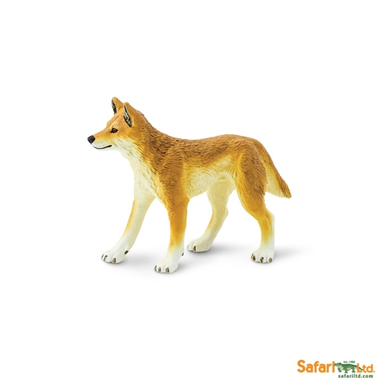 Safari Ltd 228229 Dingo  10x6,5cm