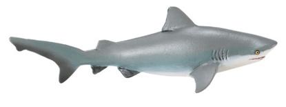 Safari Ltd  422429 Rekin żarłacz tępogłowy  14,5 x 6,5cm