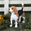 Safari Ltd 254929 Pies rasy Beagle  6,5x4,5cm