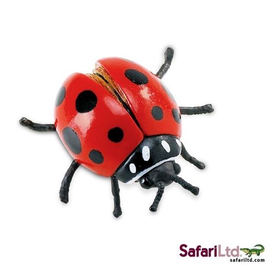 Safari Ltd 542606 Biedronka 7x7,5x3,3cm