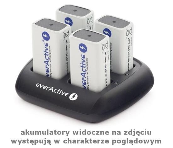Ładowarka akumulatorków Ni-MH profesjonalna everActive NC-109