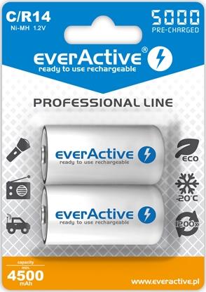 2 x akumulatorki everActive R14/C Ni-MH 5000 mAh ready to use