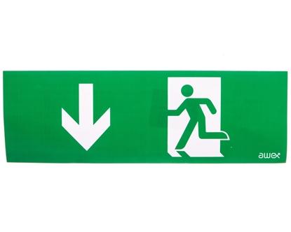 Piktogram 100x300 PM26 strzałka dół człowiek w drzwiach logo awex (ISO7010)