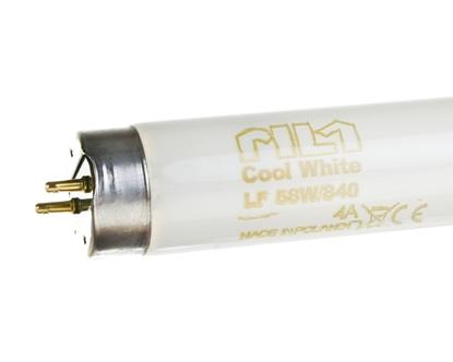 Świetlówka G13 58W 840 4000K LF80 Cool White 1SL/25 8727900961799 PILA /25szt./