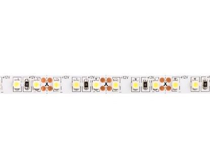 Taśma FLASH 3528 600 LED zimny biały 48W bez żelu 8mm ROLKA IP20 LD-3528-600-20-ZB /5m/