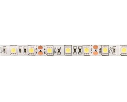 Taśma FLASH 5050 300 LED zimny biały 72W wodoodporna 10mm ROLKA IP65 LD-5050-300-65-ZB /5m/