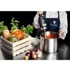 Mocny mikser blender robot ręczny dł. ramienia 300mm 350W 230V Royal Catering