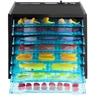 Profesjonalna przemysłowa suszarka do żywności ziół owoców grzybów 8 rusztów 630W 230V